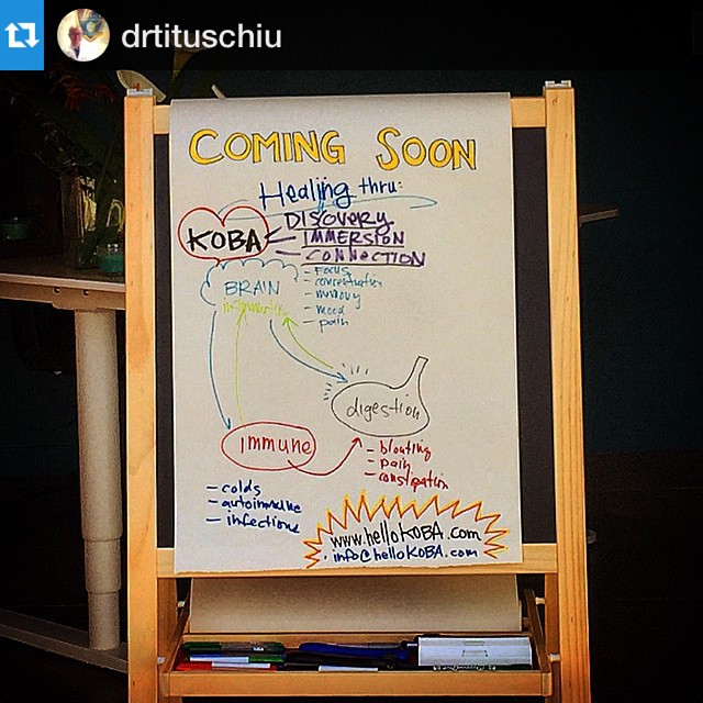 Ramping up for our grand opening!! Healing thru #DISCOVERY #IMMERSION and #CONNECTION @hello.koba #chiropractic #neurology #nutrition #Berkeley #comingsoon #repost @drtituschiu
