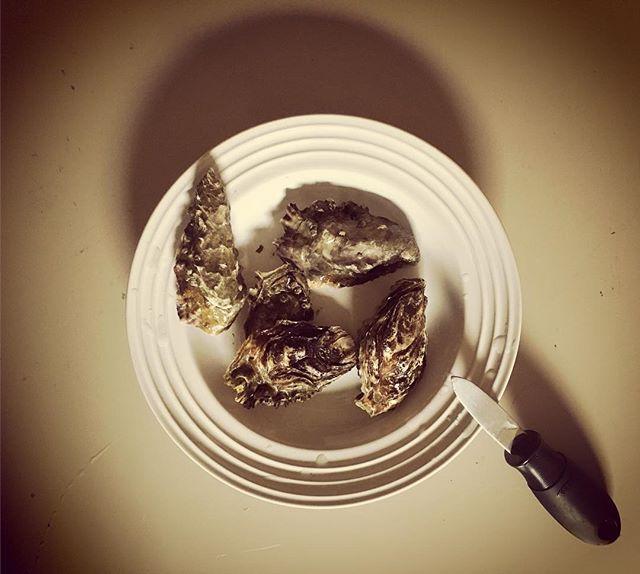 Breakfast of champions #KOBA #chiropractic #neurology #nutrition #oysters #rawoysters #seafood #berkeley #baronsmeats #drtituschiu