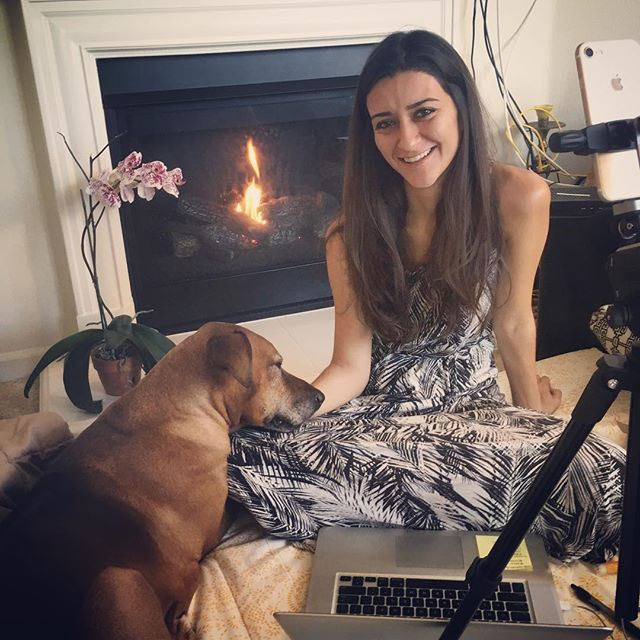 Happy National Introvert Day! Sending so much love to all of you for connecting and supporting me through the internet while I make believe at home. I feel so blessed to be able to share my passions: holistic health, art+design, ridgebacks and love...all while sitting on a mattress next to a fireplace with my orchid and my Kobababy. #newyears #aYINapproach #ladyboss #art #design #designer #KANARI #KANARILife #theKANARILife #hsp #infp #empath #healer #helper #introvert #aip #autoimmune #autoimmuneprotocol #paleo #glutenfree #dairyfree #gfdf #hashimotos #naturalmedicine #wellness #chiropractic #nutrition #homeopathy #DrNatashaFallahi #DrNatashaF