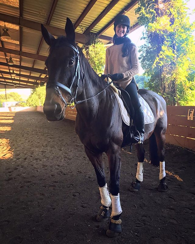 """THE SKYES THE LIMIT I'm pretty good at """"making things happen""""...except when it comes to my own dreams. Thank god I have @drtituschiu at my side to support me when I get in my own way. . This is Skye! He is my handsome new horsefriend. A sweet 17HH rehabbed thoroughbred, he had an injury and is a super sensitive soul. He's living with his wonderful new trainer on a family ranch and working on healing. . Yesterday, I had my first date with him and it was a perfect match! We both ride lightly and are attuned to the subtleties. He's working on get healthy and building back muscles, and I hope to do the same! I have a lot to learn from him and can't wait for our weekly dreamdates to start. . It's not easy to get into the horseworld...I don't know much about shows, the difference between dressage or hunter/jumper, racing, training styles, sales of a living animal...I just want magical horse friends to spend time with. A majestic spirit to enjoy the sun and air and earth. A movement buddy to teach me how to be balanced and strong. A soul guide to help me practice listening and communicating. . Titus reminded me that we never reach a point when we're ready to start living our dreams - so you gotta just take action on it now! And I've ALWAYS dreamed of spending my days surrounded by horses and dogs. . Are you a horse lover?  Please give me any and all the advice you have for a rusty rider who is ready to become a crazy horse lady! (Including the more fringe and holistic horse stuff like healthcare and training philosophies and equine diet tips!) . . . #spiritfriends #horse #17HH #thoroughbred #healing #animalchiropractic #equinechiropractic #dreamlife #ladyboss #livingthedream #KANARILife #hsp #infp #empath #healer #helper #introvert #aip #autoimmune #autoimmuneprotocol #hashimotos #naturalmedicine #chiropractic #bioenergetics #functionalmedicine #functionalneurology #nutrition #homeopathy #DrNatashaFallahi #DrNatashaF"""